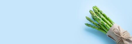 bunch of fresh green asparagus on a blue background, banner format