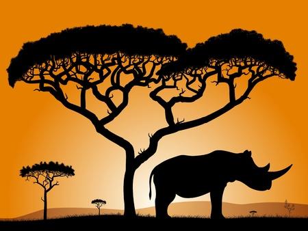 Savannah - nosorożec. Świt w afrykańskiej sawannie. Sylwetki drzew i nosorożców na tle pomarańczowego nieba.