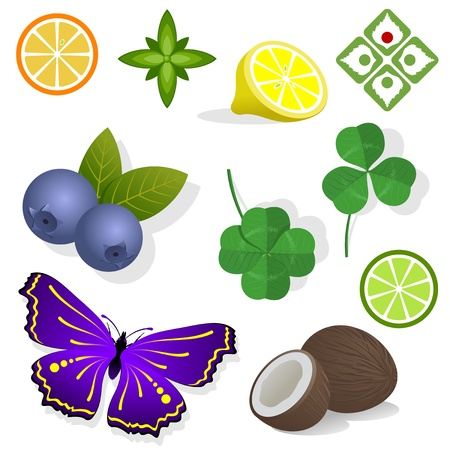 Clipart - plants  Fruit, leaves and butterfly  Vector illustration