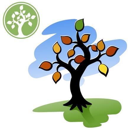 Tree  Decorative autumn tree  Logo - a silhouette of a tree    Stock Vector - 15604754