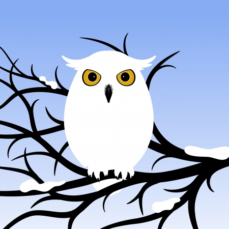 White Owl  Owl sitting on a tree branch  Vector illustration
