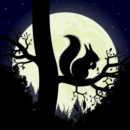 Squirrel on a tree  Silhouette of the squirrel on the background of the moon  Vector illustration  Vector