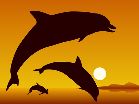 cetaceans: Dolphins. Silhouettes of the dolphins on sunset background. Vector illustration.