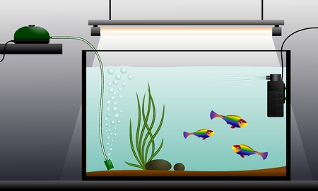 schematic: Aquarium. Schematic representation of the aquarium. Aquarium equipment. Vector illustration.
