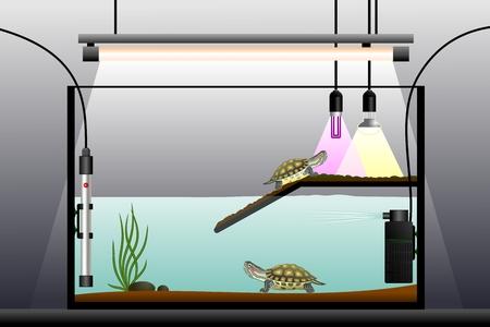 bomba de agua: Acuaterrario. Representación esquemática del terrario. Equipos terrario. Ilustración del vector.