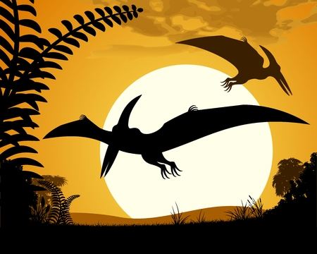 pterodactyl: Dinosaur pterodactyl. Pterodactyls silhouette on sunset background. illustration. Illustration