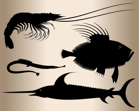 scorpion fish: Marine fish and shrimp. Silhouettes of sea animals: fish sword, scorpion fish, pipefish and shrimp. Vector illustration.