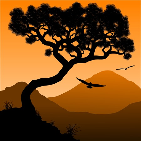 Mountain pine. Silhouette of a tree and mountains in the background sunrise. Vector illustration. Illustration