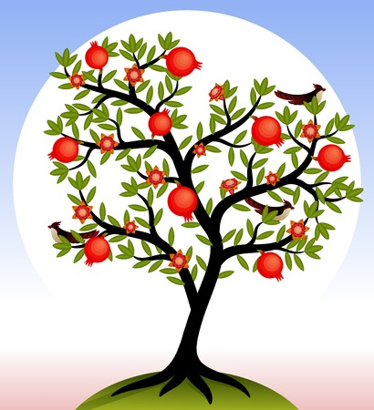 Fruit tree. Pomegranate tree with fruits and flowers. Birds on the tree. Vector illustration.