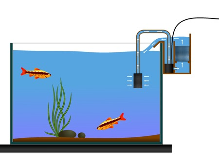 ichthyology: Aquarium equipment. Aquarium Waterfall Style Bio Filter. Vector illustration. Terrarium equipment.