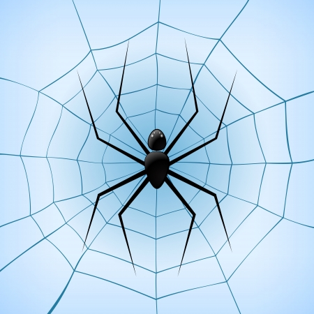 A Spiderweb with Spider on blue background. Vector Illustration  Stock Vector - 19033948