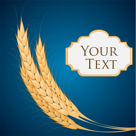 Vector background with ears of wheat. Vector