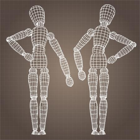 Vector model of body Illustration