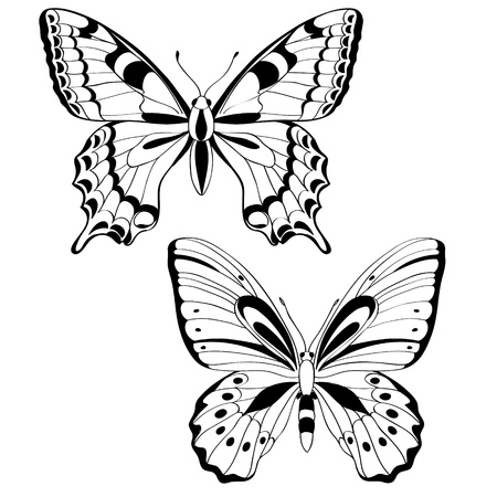 butterflies in black and white illustration Illustration