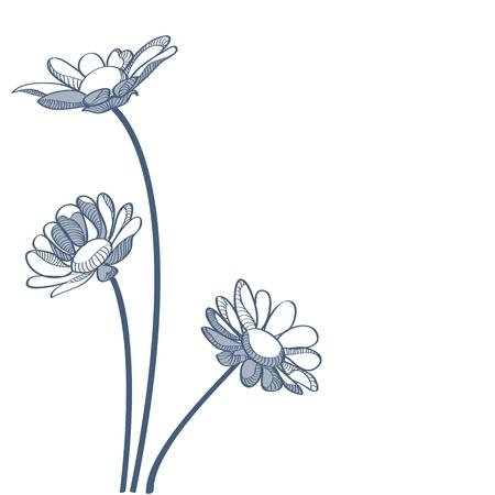 Blue camomiles illustration Stock Vector - 19228674