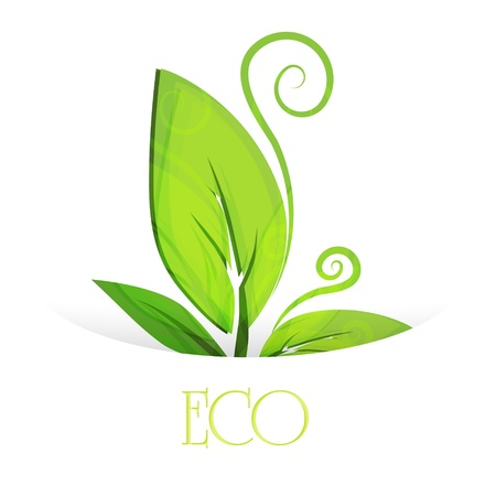 Vector eco leaves.  Stock Vector - 19274628