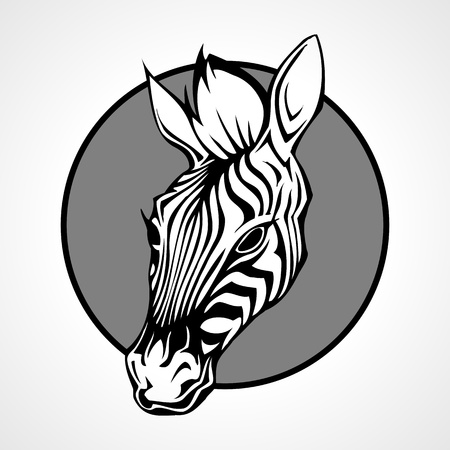 Head of a zebra, vector illustration Vector