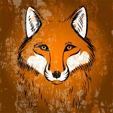 Red fox. Vector illustration. Vector