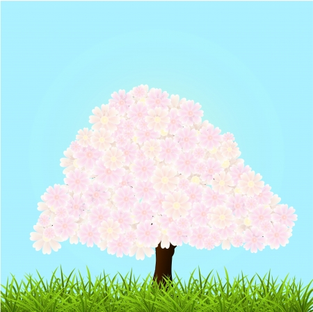 Vector illustration of a blossom tree. Stock Vector - 19331091