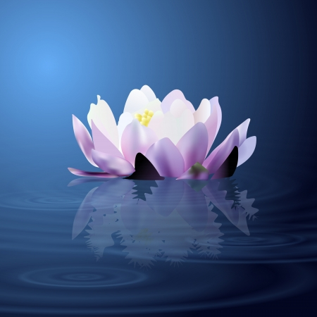 Water lily. Vector illustration.