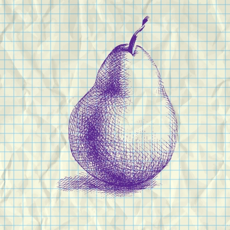 Sketch illustration of pear on notebook paper. Vector