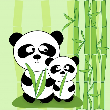 Vector panda Vector