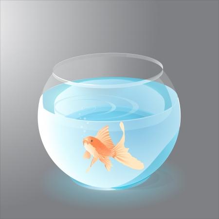 Aquarium with Golden Fish Stock Vector - 19592222