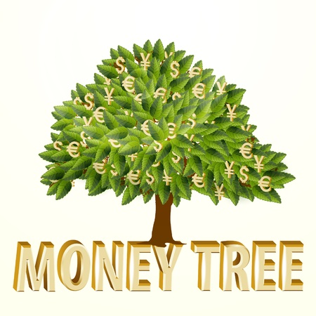 Money tree isolated on white background  illustration Vector