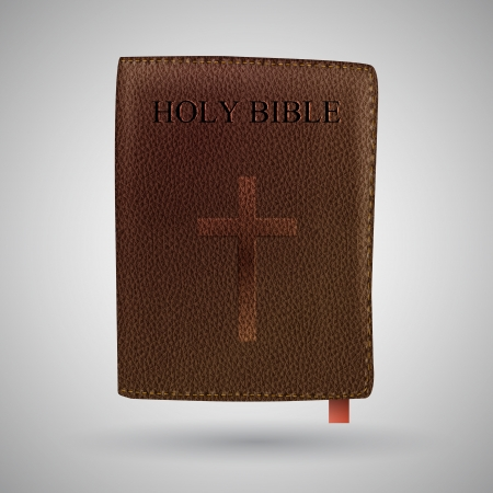 Holy Bible Stock Vector - 19773707