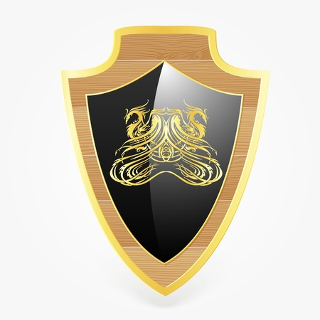 shield with dragon symbol Vector