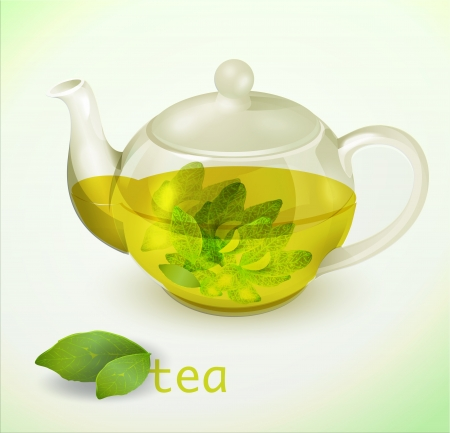 transparent teapot Vector