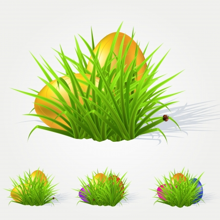 Painted Easter eggs lying in the grass. Vector illustration Stock Vector - 19898868