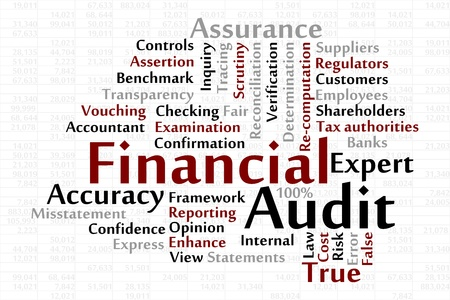 reconciliation: Financial Audit word cloud with data sheet background