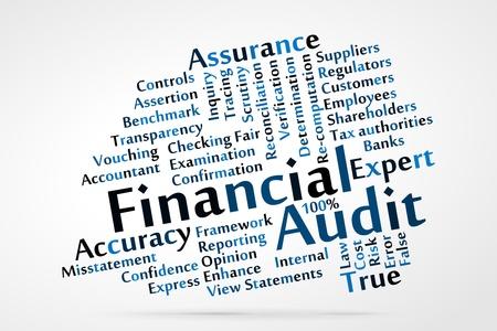 Financial Audit word cloud Stock Vector - 21176656