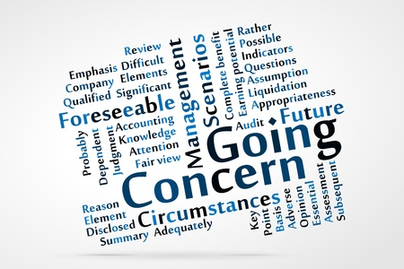 point of view: Going Concern word cloud