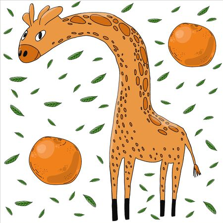 Giraffe and citrus fruits flat hand drawn illustration. African cartoon animal characters. Giraffe and oranges, tangerines and foliage Scandinavian style. Wild mammal on a background of citrus fruits