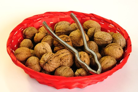 pincers: close up of wallnut with pincers in red basket