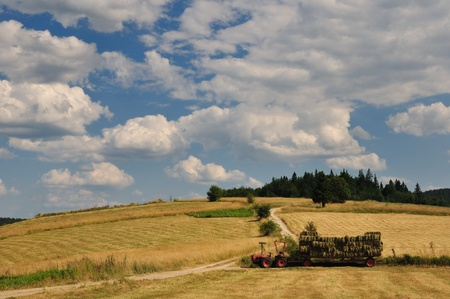 Harvest in mountain, tractor on field and cloudy sky photo