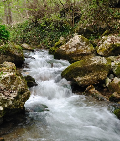 Wild stream between stones in green forest landscape Stock Photo - 12797353