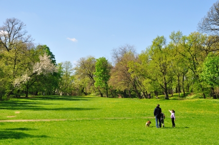 walk in the park: Family with dog in spring blossom park