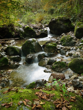 View on the small river between stones in forest photo