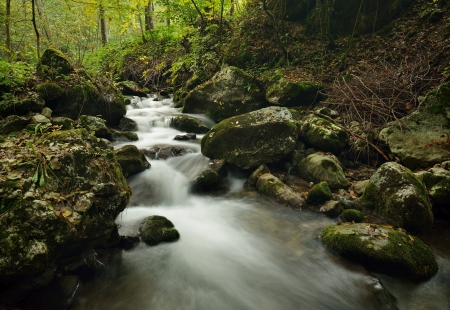 View on the small river cascade over stones in forest photo