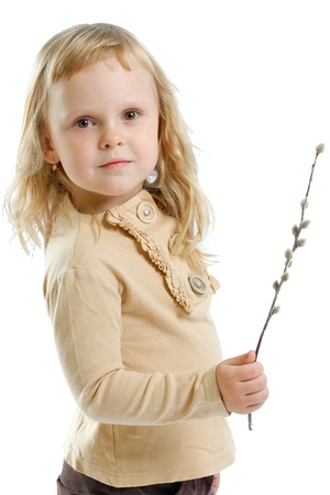 Pussy willow in the hands of a girl on a white background photo