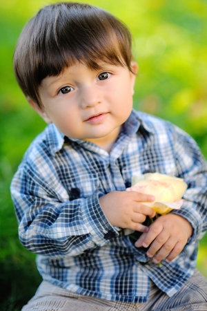 portrait of a baby boy outdoors with a rose photo