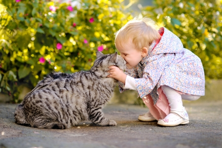 gato jugando: retrato de una ni�a con un gato