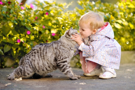 pet animal: portrait of a little girl with a cat