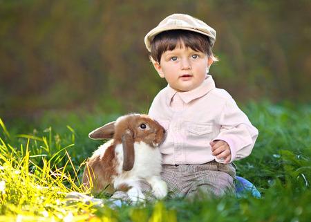 portrait of a little boy with a rabbit photo