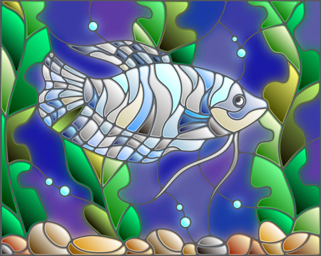 scalare: Illustration in stained glass style with blue gourami on the background of water and algae