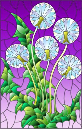 blowball: Illustration in stained glass style flower of blowball on a purple background