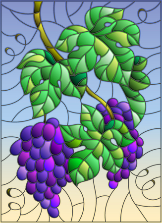 The illustration in stained glass style painting with a bunch of red grapes and leaves on sky background